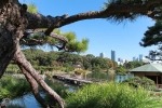 мост на пруду в парке Хамарикю