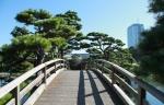 мостик в парке Хамарикю