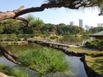 вид на парк Хамарикю