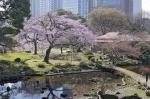 сад-парк Хамарикю в Токио