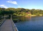 вид на парк Хамарикю с моста