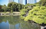 сад Хамарикю в Токио