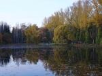 пруд в дендропарке в Екатеринбурге
