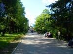 аллея, Екатеринбургский дендропарк