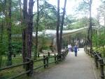 парк Юрского периода в Польше