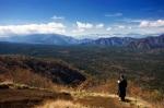 лес Аокигахара с горы Фудзияма