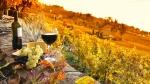 винно-гастрономический тур в Италию