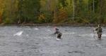 Удачные места для клева и рыбалки в Украине