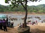 купание слонов питомника Пиннавела, Шри-Ланка