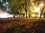 парк в Симферополе осенью