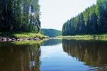 природный парк Вепсский лес в Ленинградской области