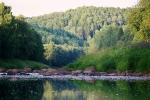 природа парка Вепсский лес