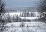 зима в Вепсском лесу