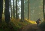 дорога в Вепсском лесу