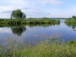 заказник Замглай, Черниговская область, Украина