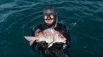 подводная охота в Шри-Ланке