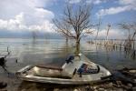 затопленные берега озером Энрикильо, Доминикана