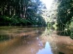 река Ислочь в заказнике Тресковщина