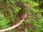 веревочный парк в Зубровнике