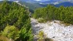 камни горганы в Горганах