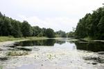 река Рось возле Богуслава