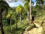 Samana, Dominikana