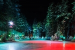 Лесной каток в Охта Парке