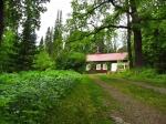 Арборетум Мустила в Финляндии