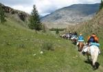 конный туризм на Алтае