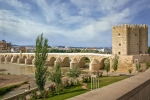 Римский мост и башня Калаорра