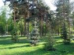 сад Лецкого, Казань