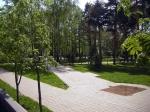 сад Лецкого
