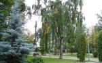 Лядский сад