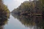 канал в урочище Покол, Киев