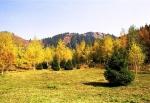 Бутаковское ущелье в Алматы