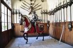 рыцарь в доспехах в замке Жлебы