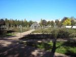 розарий Ботсада ТНУ, Симферополь