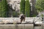скульптура в Ландшафтном парке Сусловых