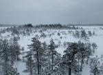 Валкмуса зимой