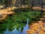 болото в Валкмусе