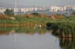 озеро Мандра, Бургас
