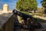пушка в Верхних садах Баракка