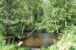 река Волчья, база Петяярви