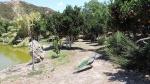 Ботанический парк, Крит