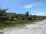 реликтовый пляж в Восточном Тиморе