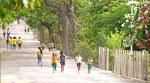 жизнь на острове Атауро