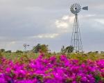 Protaras Windmills