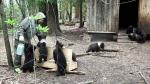 биостанция Чистый лес, Тверская область