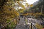 Seoraksan NP, South Korea