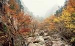 Нацпарк Сораксан осенью